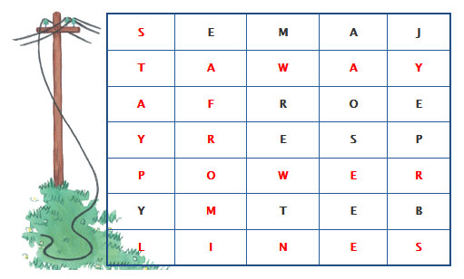 Answer to cross word puzzle with hidden message Stay Away From Powerlines.